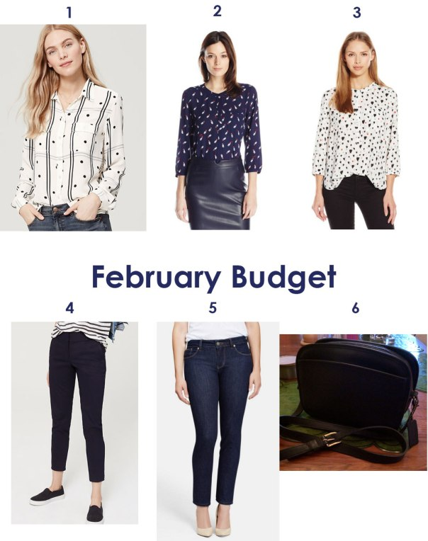 What I bought in February: LOFT dotty blouse, NYDJ lipstick blouse, NYDJ hearts blouse, LOFT skinny pants, Beija Flor Nicole Jeans, Vintage Coach bag